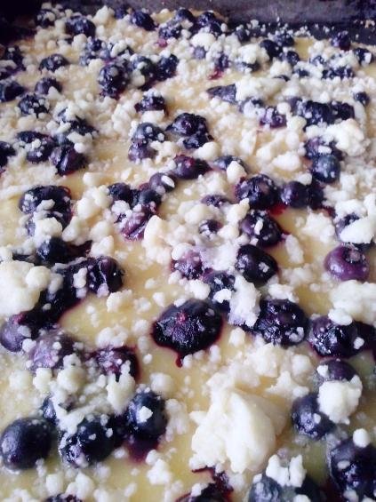 Blueberry_Lemon_Shortbread_Crumble_ Bars3